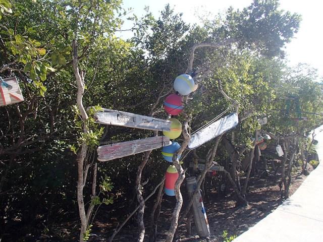 Sugar Adventure Company - Compass Cay