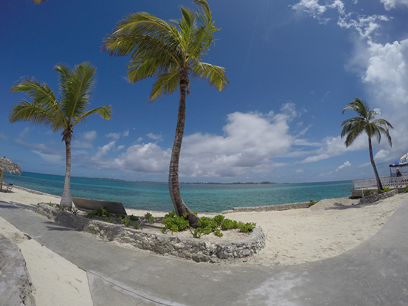 Pearl Island Views