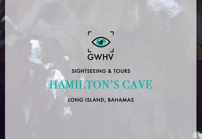 Hamilton's-Cave-feature-img