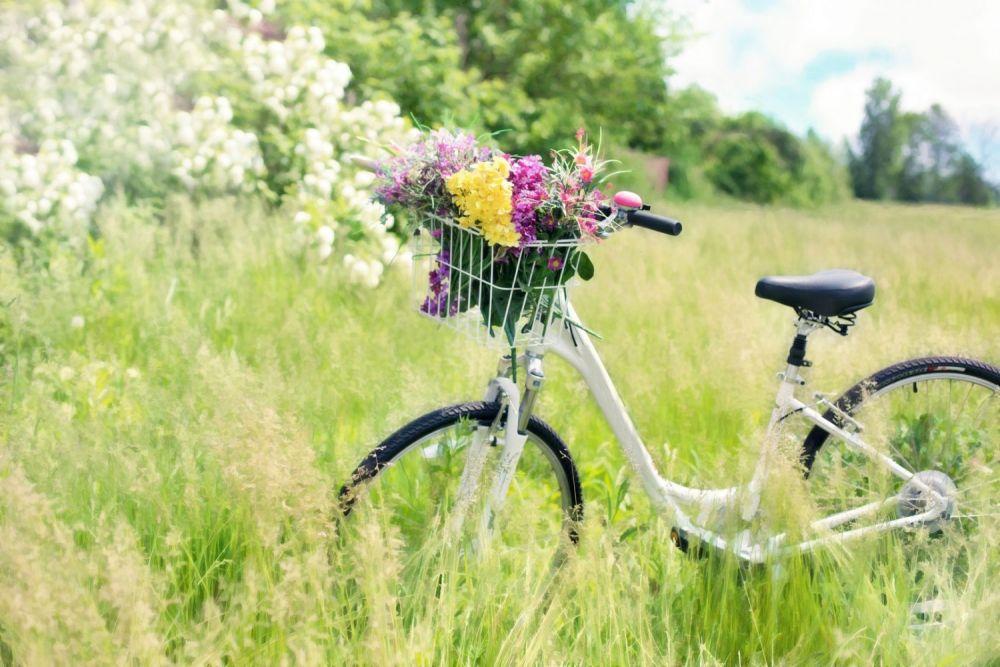 Gita in campagna in bicicletta