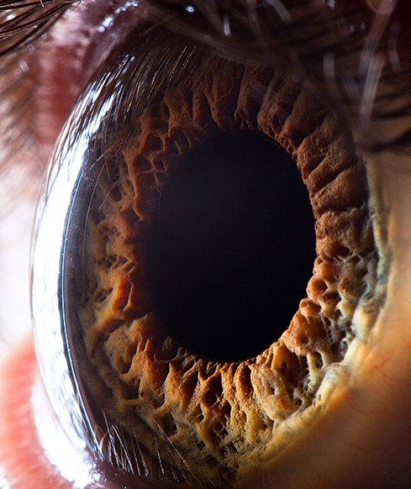 Photos of the Beautiful Human Eye Close Up - Sublime99