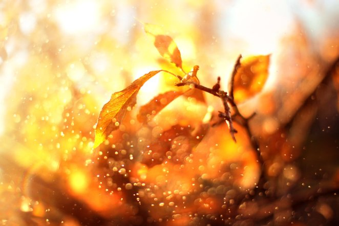 Beautiful Inspiring Autumn Photos - Girly Design Blog