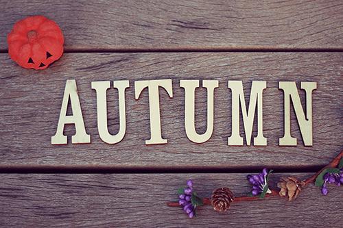 「文字アート」「秋」などがテーマのフリー写真画像
