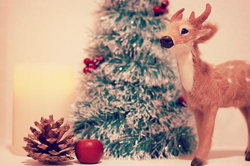 「クリスマスツリー」「クリスマスパーティ」「サンタ」「サンタ帽」「ミニスカサンタ」「友達」「双子ルック」「女性・女の子」「巻き髪」などがテーマのフリー写真画像