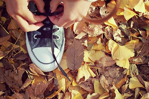 「iPhone」「イチョウ」「秋」などがテーマのフリー写真画像