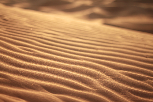 これぞ砂漠!風によって作られたシマシマが美しい砂紋