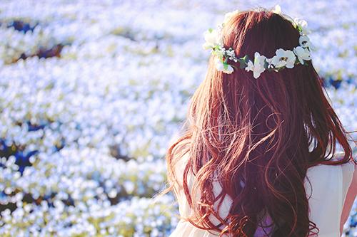「ネモフィラ」「女性・女の子」「春」「花」「花かんむり」「花畑」などがテーマのフリー写真画像