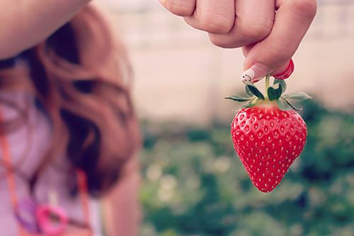 イチゴ狩りで見つけた綺麗な形のイチゴちゃん