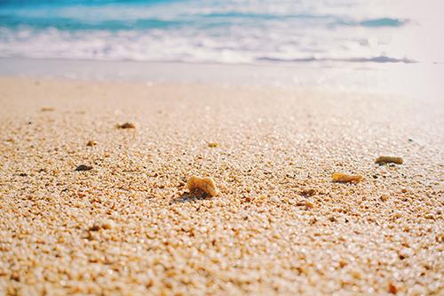 「ビーチ」「夏」「海」などがテーマのフリー写真画像