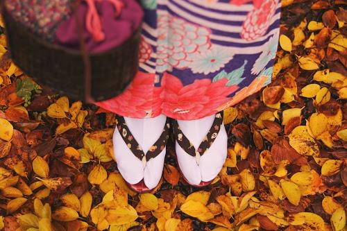 落ち葉の絨毯の上に立つ着物の女の子の足元