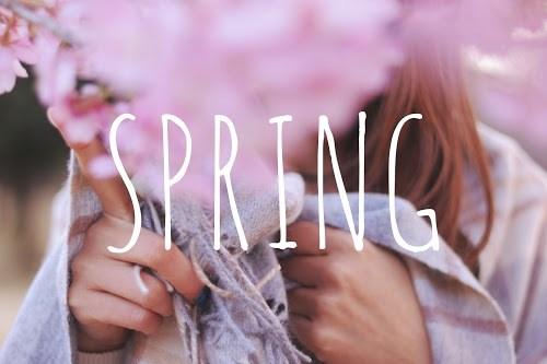 「ストール」「女性・女の子」「巻き髪」「春」「桜」「花」などがテーマのフリー写真画像
