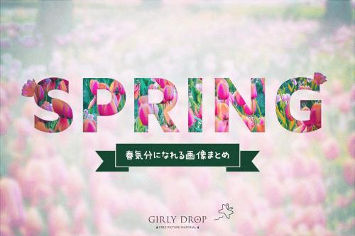 「春」「桜」などがテーマのフリー写真画像