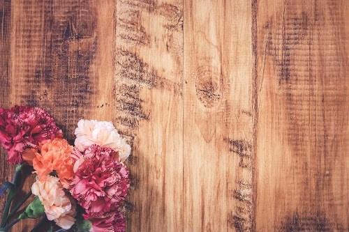 「カーネーション」「俯瞰撮り」「春」「植物」「母の日」「真上から」「花」などがテーマのフリー写真画像