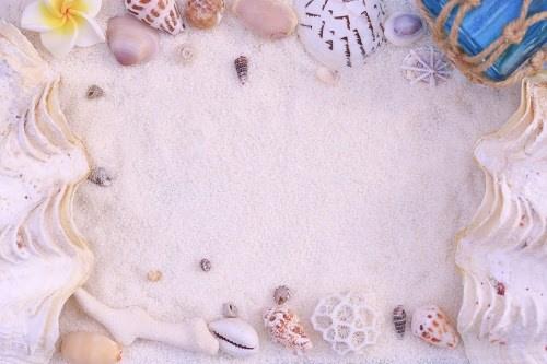 「フレーム」「夏」「文字入り」「砂浜」「貝殻」などがテーマのフリー写真画像