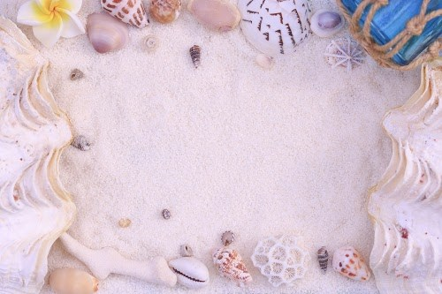 「フレーム」「夏」「砂浜」「貝殻」などがテーマのフリー写真画像