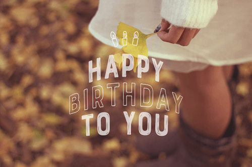 「HAPPY BIRTHDAY」「おめでとう」「お祝い」「お誕生日おめでとう」「秋」「秋の誕生日」などがテーマのフリー写真画像