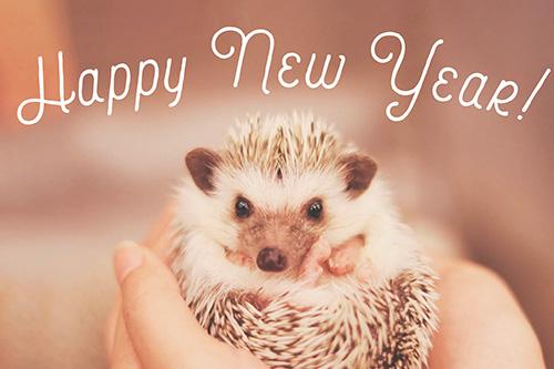 フリー写真素材:正月あけおめ年賀状画像スタンプ『HAPPY NEW YEAR』その55
