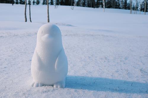フリー写真素材:ペンギン型の可愛すぎる雪だるま