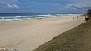 Gold Coast (12)-surfers-paradise