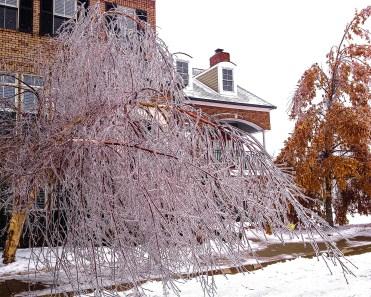 Ice Storm, Kentucky