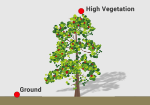 LiDAR High Vegetation