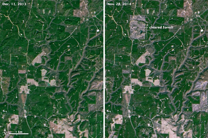 Changes in the landscape can be detected as small as the size of a baseball diamond.  These two satellite images show pre (left) and post (right) clearing of a forest in Northern Alabama.  (NASA Earth Observatory image by Joshua Stevens, using Landsat data from the U.S. Geological Survey)
