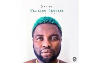 Skales Healing Process Ep Download Zip