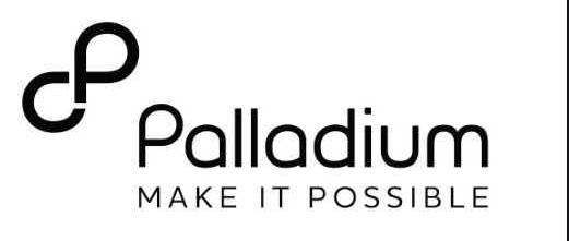 Palladium Group Job Recruitment (7 Positions)