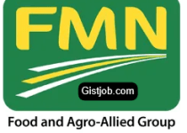 Brand and Innovation Manager - Northern Nigerian Flour Mills at Flour Mills of Nigeria Plc