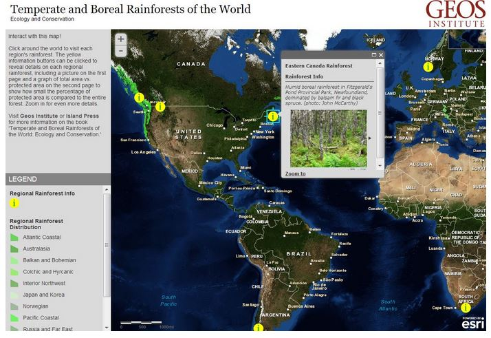 Temperate and Boreal Rainforest Web Map