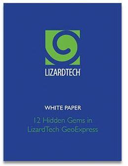 LizardTech White Paper