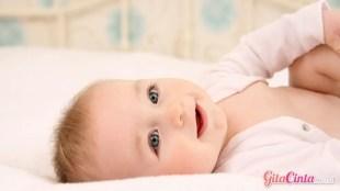 Lotion untuk Bayi Kulit Kering