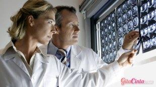 Ilustrasi: perkembangan otak pria & wanita