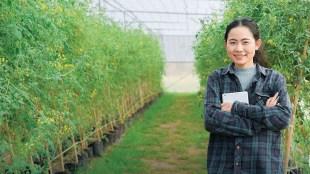 agribisnis, jurusan kuliah yang mudah dan cepat lulusnya