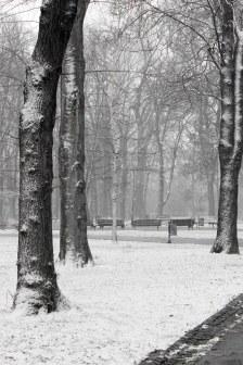 Kalemegdan Park, Beograd