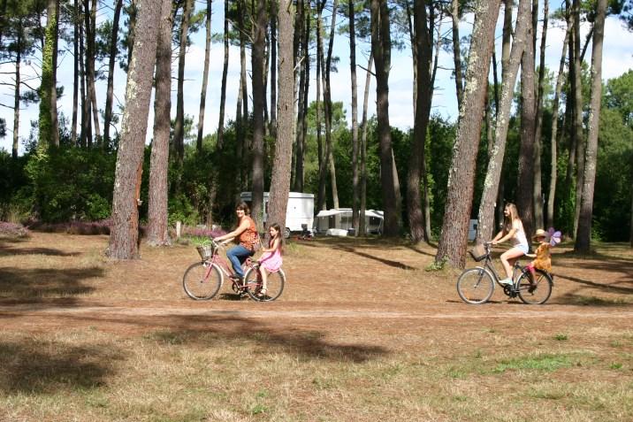 Le camping La Téouleyre est situé en pleine nature !