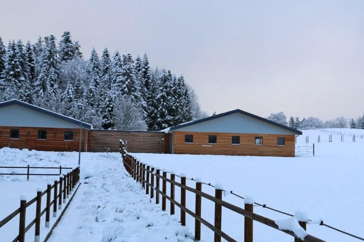 L'écurie de Frédérique en hiver