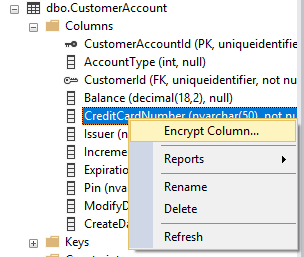 In SQL Management Studio, the previously mentioned path is expanded, CreditCardNumber is selected, and from its right-click menu, Encrypt Column is selected.