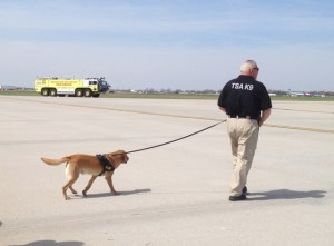 TSA dog and fire truck