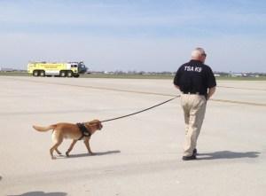 TSA dog and fire truck