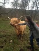 Kayla and Highland Cow