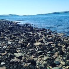 Isle of Cumbrae Water 2