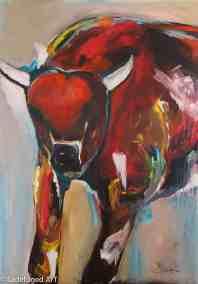 Colorful Bull