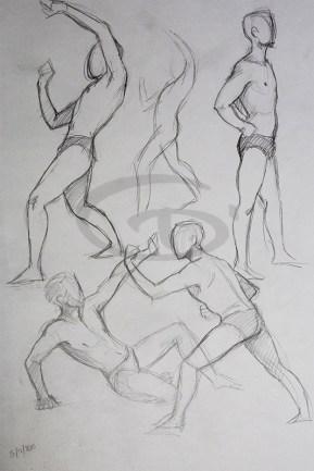 disegno dal vero