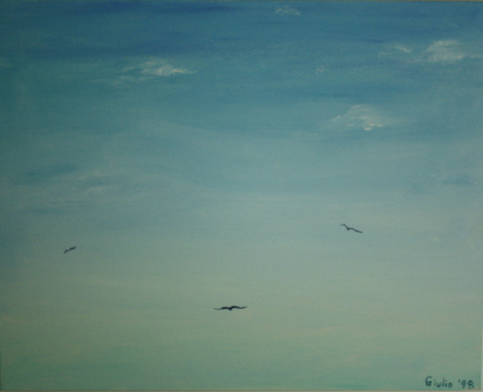 3 birds in the distance, clouds and blue sky