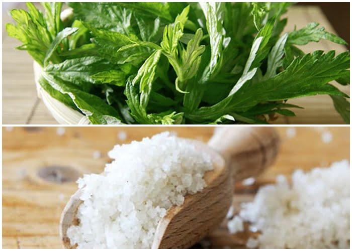 Ngải cứu và muối giúp cải thiện tình trạng đau mỏi cổ vai gáy