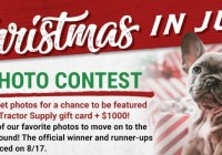2021 Christmas In July Pet Photo Contest