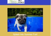 EasyPetFence Summer 2018 Giveaway - Win Cool Pup Splash About Dog Pool