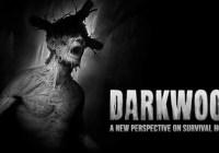 Steam PC Darkwood Giveaway