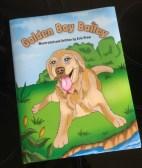 E 24. 07 Golden Boy Bailey book